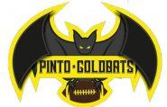 logo de pinto goldbats